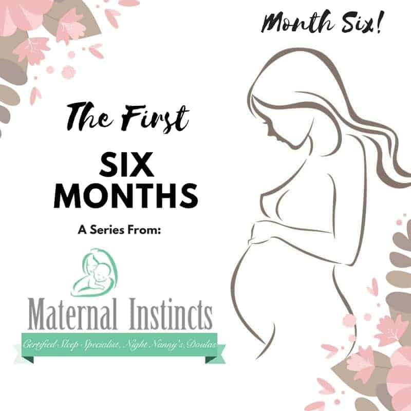 month6 - The First Six Months – An Educational Series from Maternal Instincts (What to Expect if Your Baby is Six Months Old)